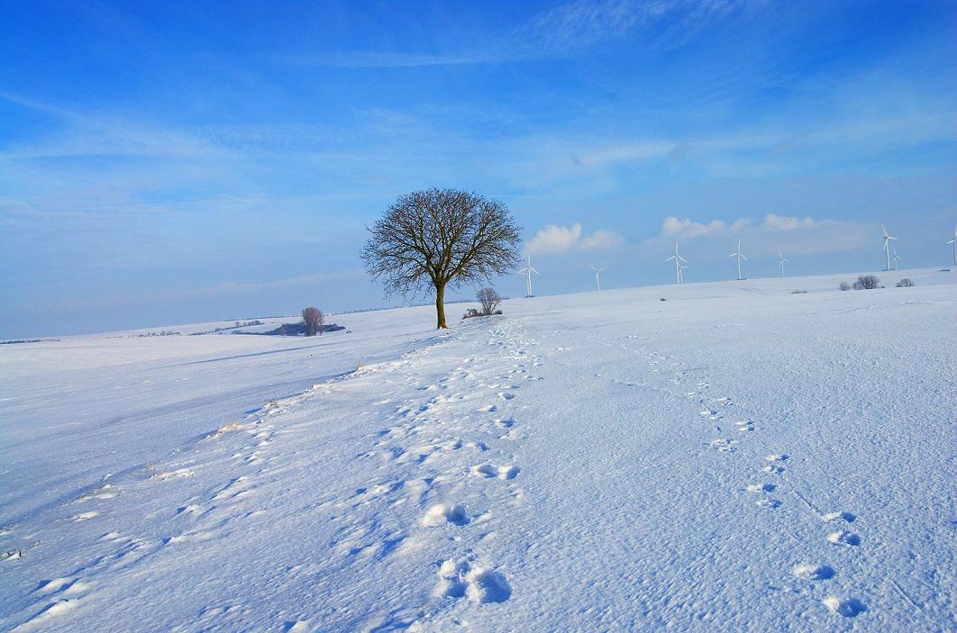 Idzie zima, dbaj o swoją odporność!