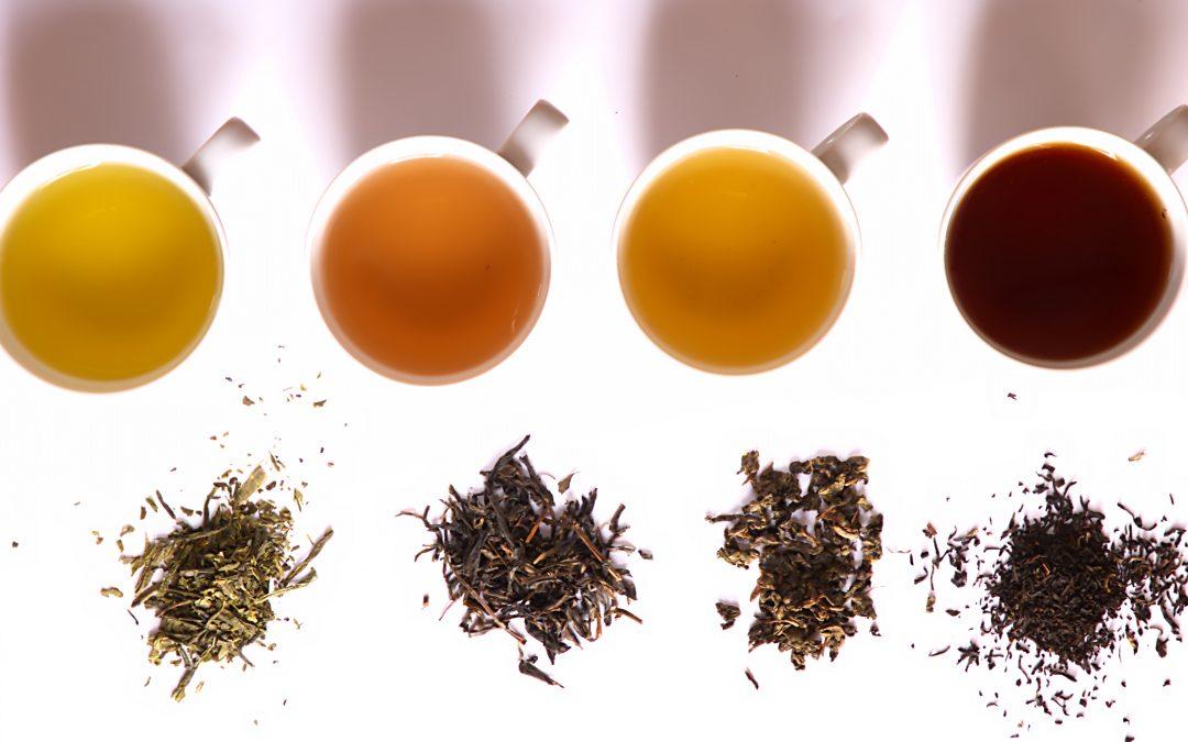 Rodzaje herbat – zastosowanie i właściwości zdrowotne